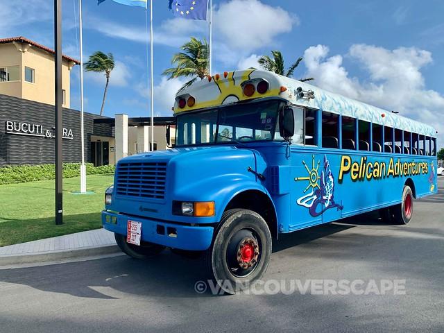 Pelican Tours