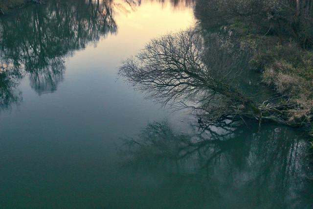 Reflections / Tükröződések