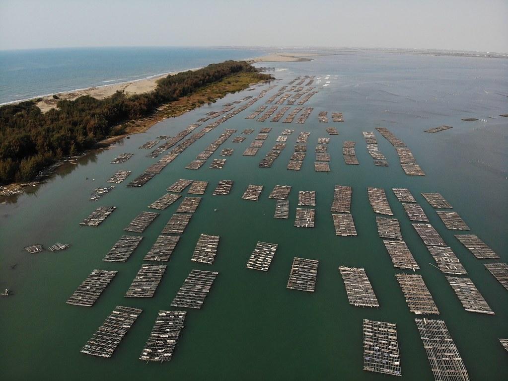 浮筏式蚵棚。照片提供:海湧工作室