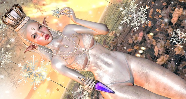 ❄ The snowflake lady ❄