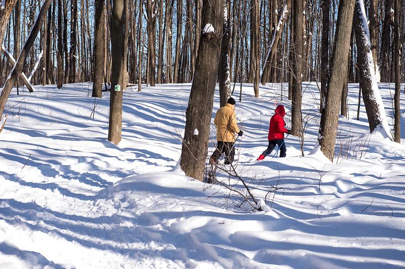 mar, 12/15/2020 - 12:09 - Parc Nature - hiver