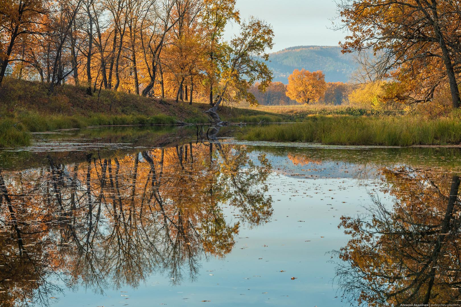 Фёдоровские луга (Самарская область)