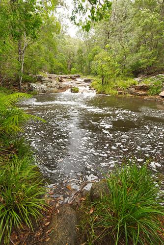 water australia queensland motharmountain gympie landscape wideangle creek pool waterfall rockpool bolder boldercreek forest