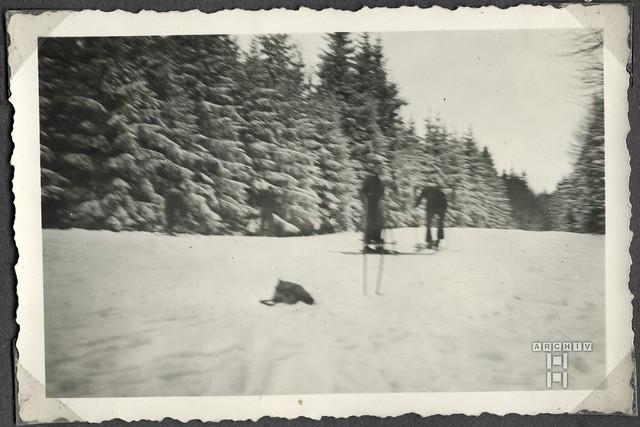 ArchivTappen2aAl2c18 Skifahrer im Wald, Österreich, Weihnachtszeit 1938