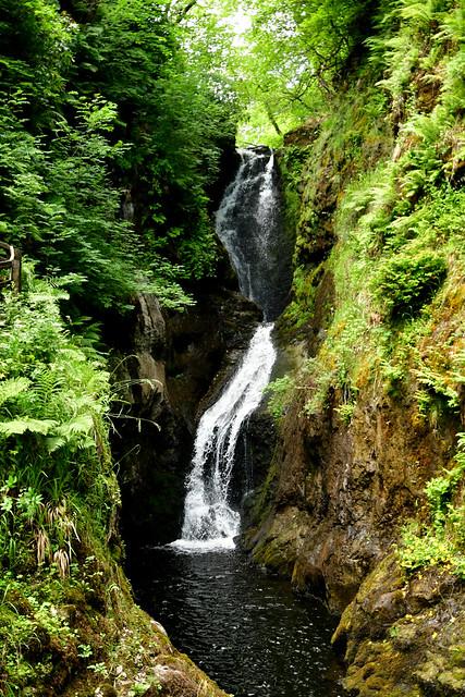 180708 Noord-Ierland - Giants Causeway - 12 Glenariff Forest 1040