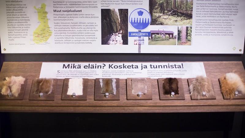 The Natural History Museum - Laura Vanzo-96