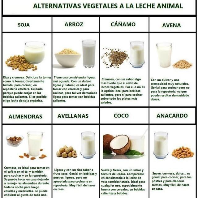 Leches alternativas a la leche de vaca