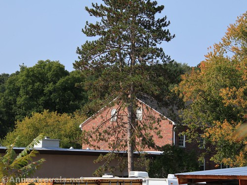 Buildings in Houghton, New York from the Genesee Valley Greenway