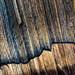 Logged horizons #3