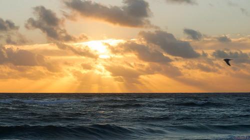 coucherdesoleil sunset floride pompano usa 0140 coucher de soleil sur la mer