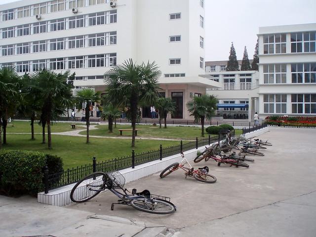 Siebenfache Bedeutungslosigkeit (umgefallene Fahrräder in China)