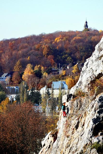 In Autumn Colors