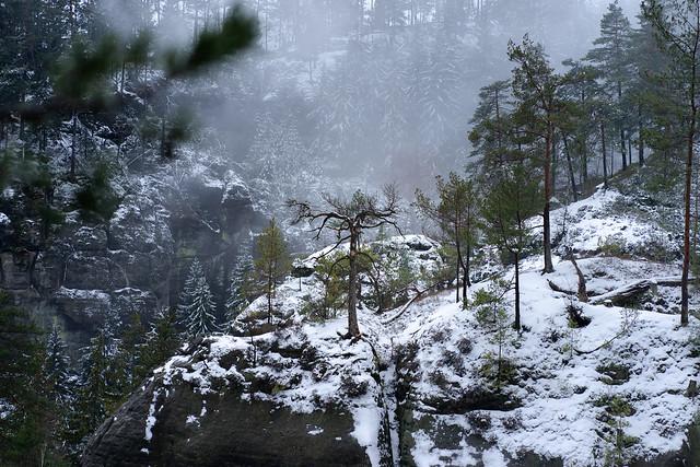 Winter in the rocks of Bohemian Switzerland. [Explored December 17, 2020]