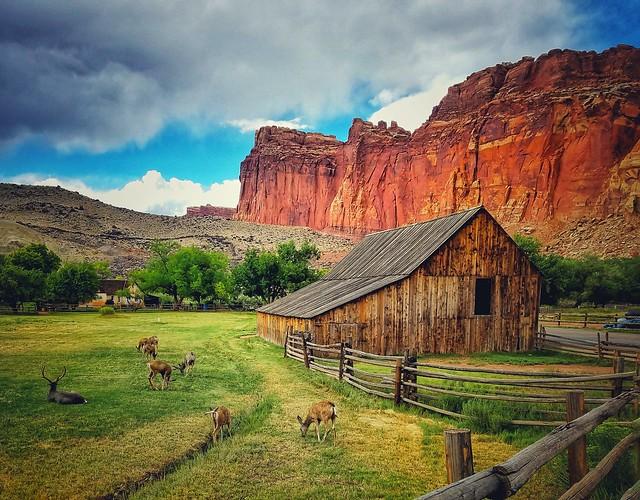 Memories of Utah...
