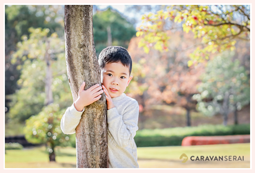 木に捕まる男の子