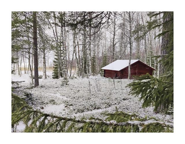Vinter i stugan