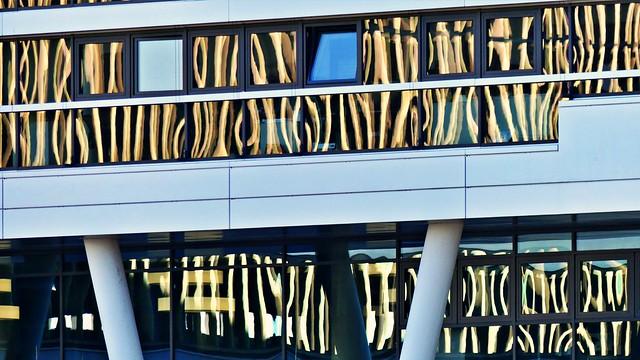 Spiegelungen im Fensterglas mit 600mm Brennweite