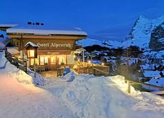Hotel Alpenruh v Mürrenu