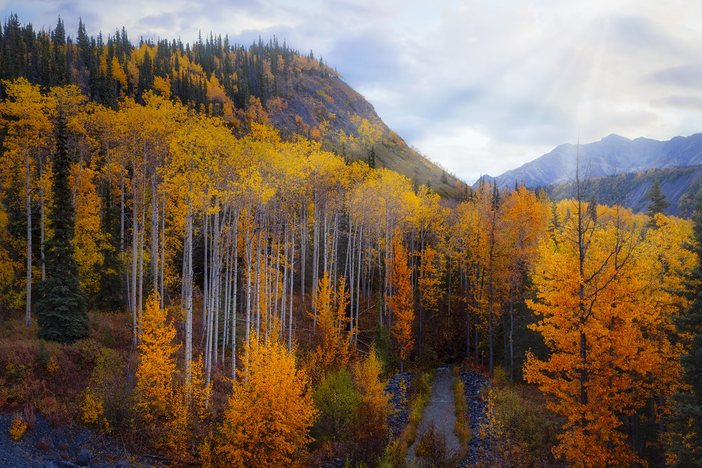 Chugach Mountain Autumn (Explored)