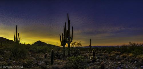 arizona hiking mcdowellsonoranpreserve scottsdale sunrise saguaro cactus mountains goldenhour