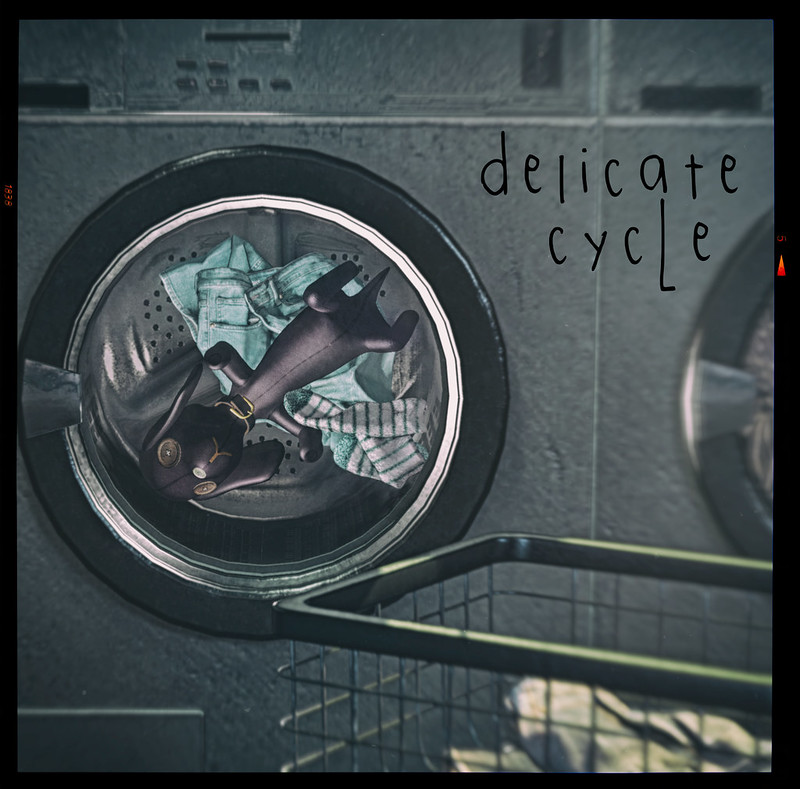 [ delicate cycle ]
