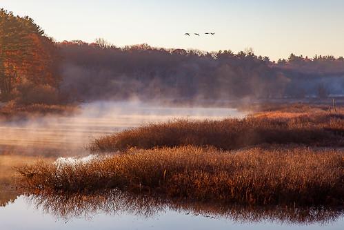nature serene sunrise river water outdoors newengland sudburyriver canon autumn