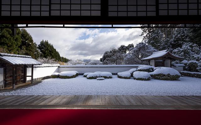December Snow / 12月の雪