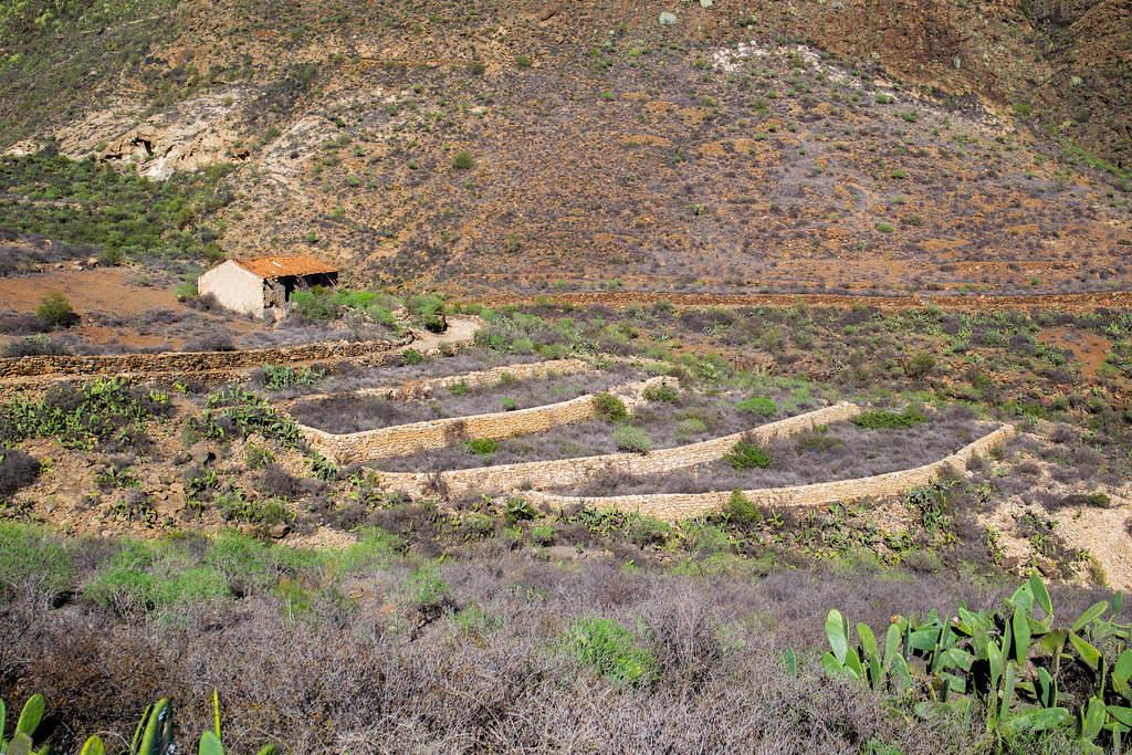 Casa del Gato y bancales destinados al cultivo en San Miguel de Abona