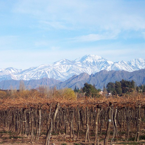 Argentina vineyard. From Open Your Eyes! A Better Life for Half the Price: How to Thrive on Less Money in the Cheapest Places to Live