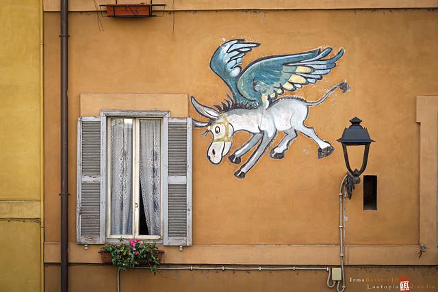 Dejemos volar nuestra imaginación,   por cierto creo que en mi casa ha entrado un burro volando