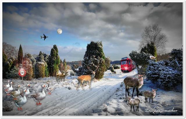 Winter-Märchenland...Fotomontage