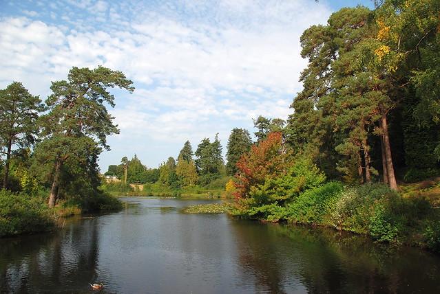 Reflecting on the Beauty of Bedgebury National Pinetum
