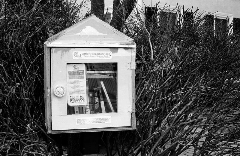 Navy St. Tiny Library_