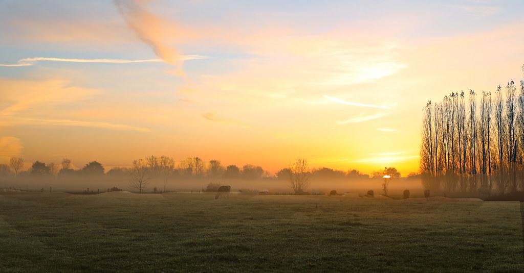 Goodmorning in Melsele - Belgium