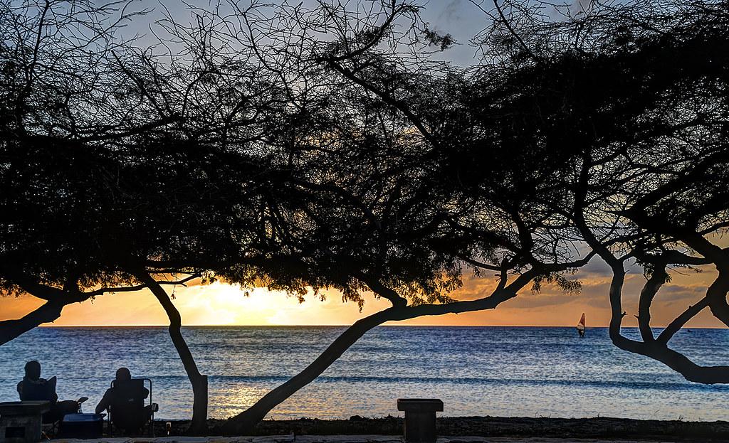 Aruba Sunset with Trees