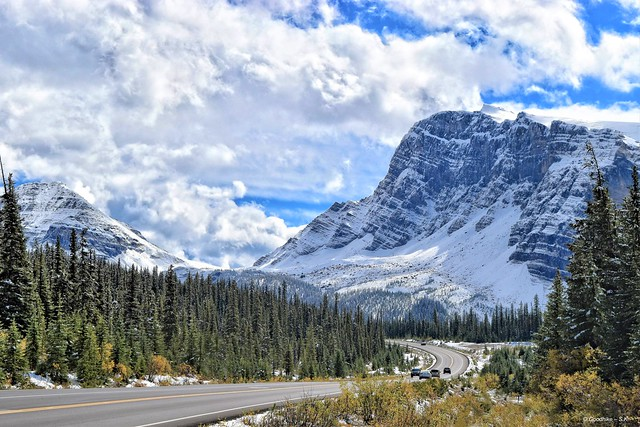 Endless Beauty of Jasper National Park in Canada