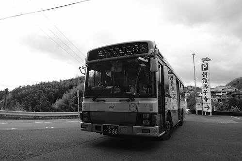 19-12-2020 Mt. Shigisan or Oji area, Nara pref (32)