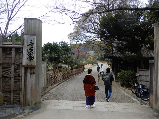 Autumn leaves of Sankeien 2020