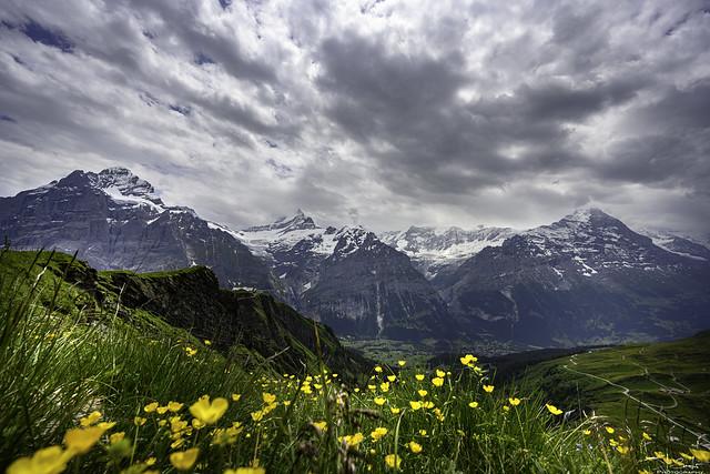 Mountain view - Grindelwald - Bern - Switzerland
