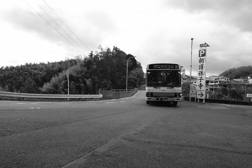 19-12-2020 Mt. Shigisan or Oji area, Nara pref (31)