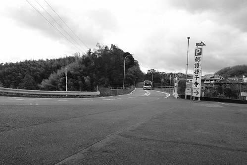 19-12-2020 Mt. Shigisan or Oji area, Nara pref (29)