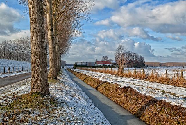 A Winter Memory