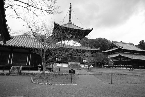 19-12-2020 Negoro, Wakayama pref. vol01 (15)