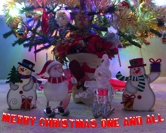 I wish all member's of Flickr a very Happy Christmas and hopefully a Covid free New Year