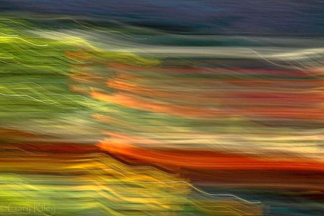 IMG_8153 - fall colors
