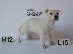 R LP29751