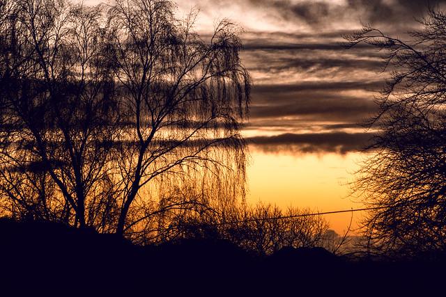 Sunset (217-3712-J01)