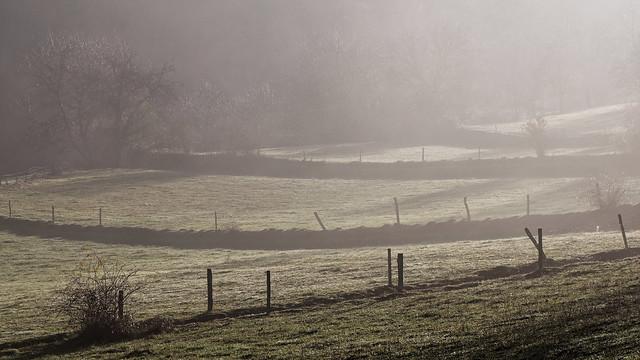 December morning walk
