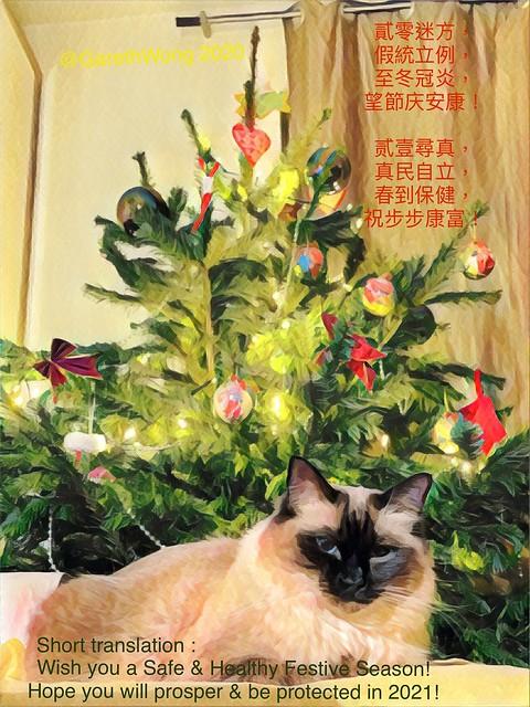 Seasons greetings and New Year Card 2021