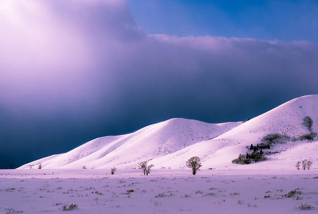 Purple Foothills After the Storm
